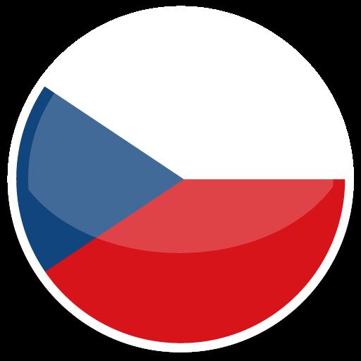 捷克VAT申报