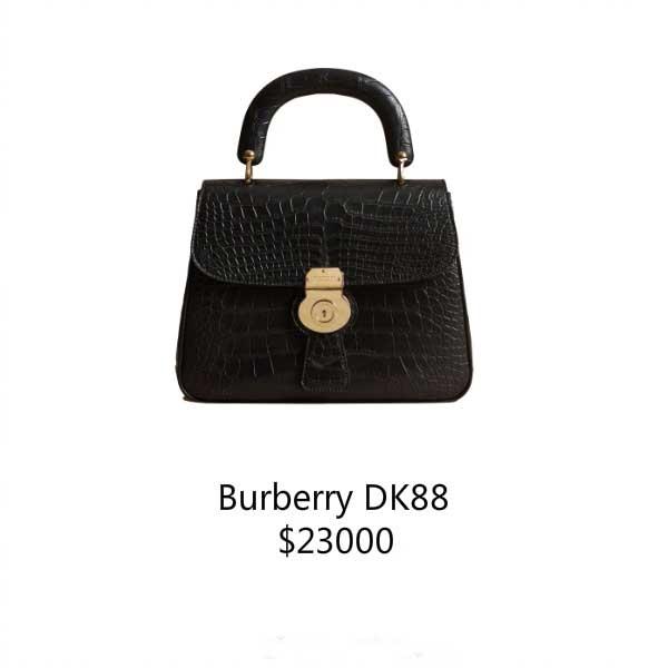 Burberrydk88 小手提包包