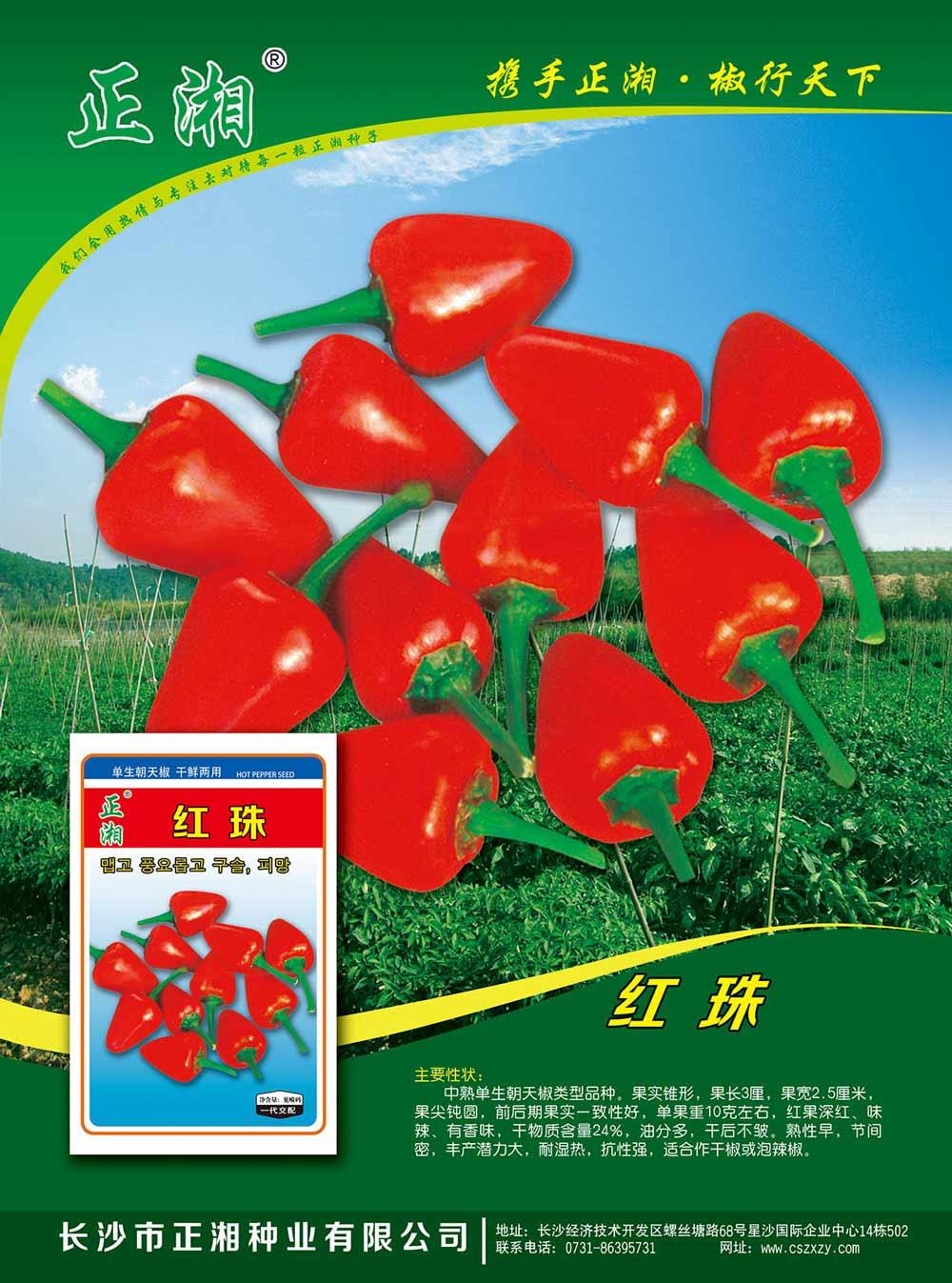 亚虎app网页版红珠朝天椒亚虎国际 唯一 官网