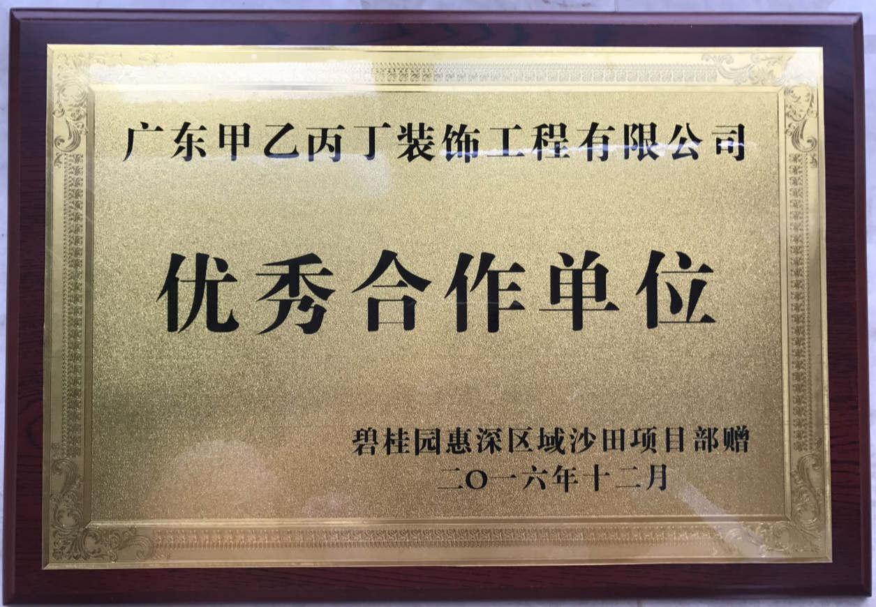 碧桂園惠深區域優秀合作單位