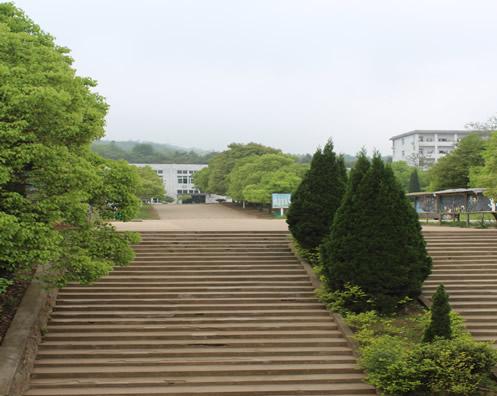 美丽校园1