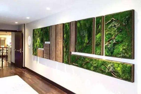 南宁植物墙,南宁仿真植物墙,南宁苔藓墙